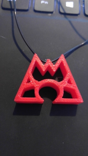Team Aqua and Team Magma Necklaces 3D Print 100697