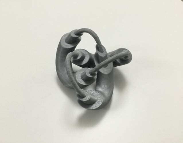Modified Torus Knot 3D Print 100910