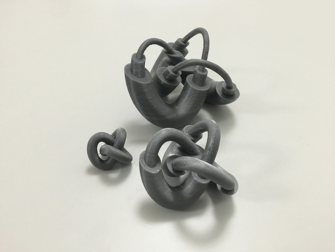 Modified Torus Knot 3D Print 100912