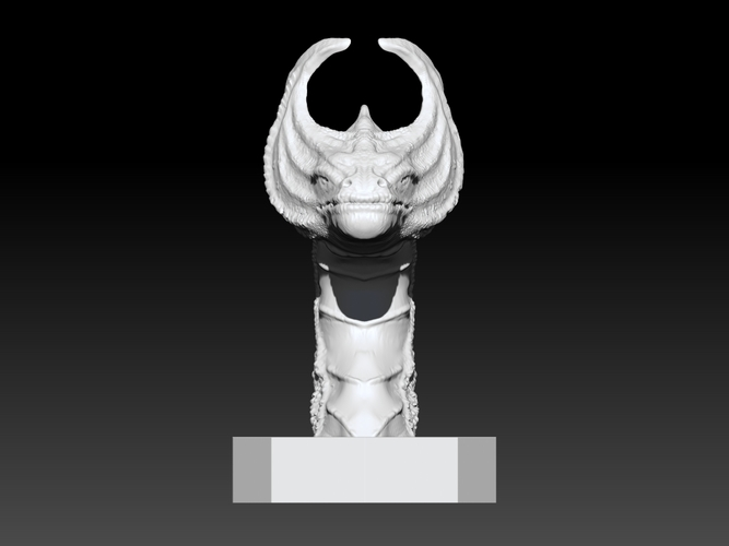 Dragon Head 3D Print 101626