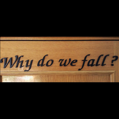 Why do we fall? 3D Print 102624