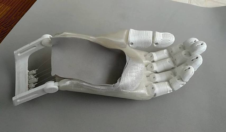 Flexy hand remix 3D Print 103016