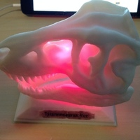 Small T-Rex skull LED Remix 3D Printing 104842