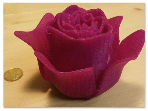 Medium Open Rose 3D Printing 104949
