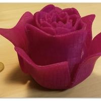 Small Open Rose 3D Printing 104949
