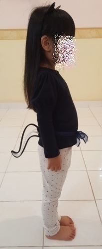 Wearable Cat / Skunk Tail 3D Print 109789
