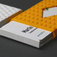 Small BUSINESS CARD CASES 3D Printing 110910