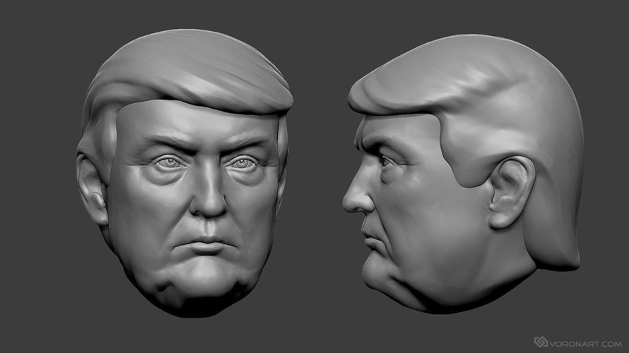 3d printed donald trump portrait 3d model by voronartcom for Donald model