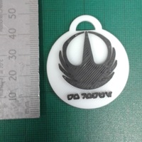Small Rogue One Key fob 3D Printing 112587