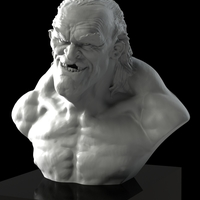 Small Scary old dude bust ! 3D Printing 114222