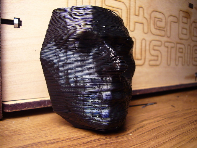 Andy's Face 3D Print 114870