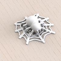 Small Spider 3D Printing 119237