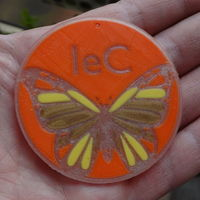 Small Phosphorescent butterfly with logo 3D Printing 120065