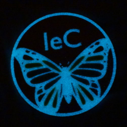 Phosphorescent butterfly with logo 3D Print 120066