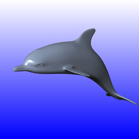 Small DOLPHIN 3D Printing 120265