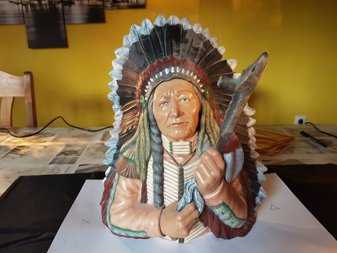 indian chief scan 3D Print 124513