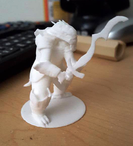 Roktor - The Dragonborn Fighter 3D Print 125910