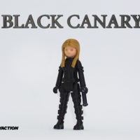Small Black Canary 2.0 3D Printing 128136