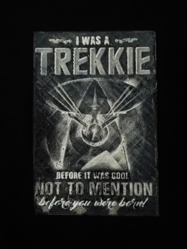 I was a Trekkie... EXAMPLES of photo relief software 3D Print 129583