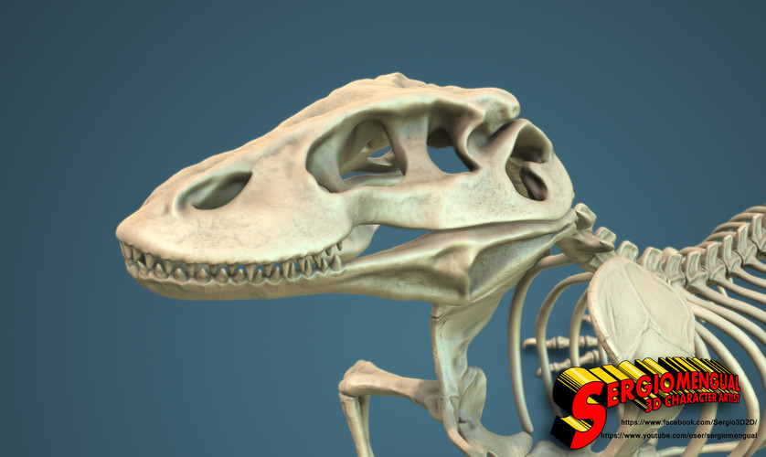Komodo Dragon Skeleton 1:5 Scale 3D Print 130033