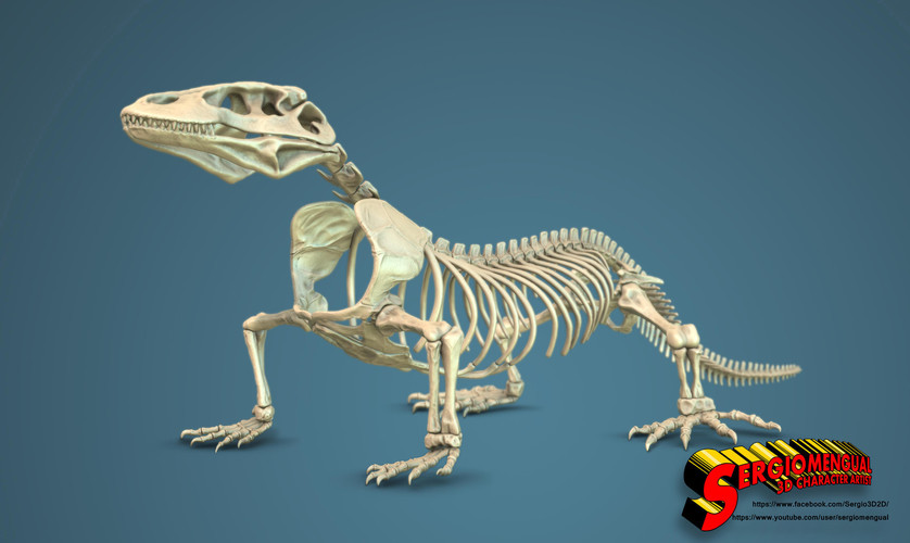Komodo Dragon Skeleton 1:5 Scale 3D Print 130038