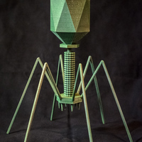 Small Bacteriophage - T4 Virus 3D Printing 130176