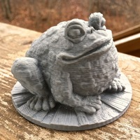Small Garden Toad 3D Printing 130236