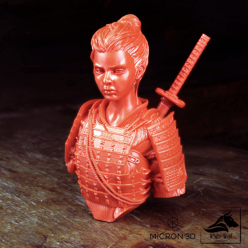 Sana the Samurai 3D Print 130431