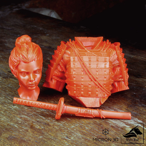 Sana the Samurai 3D Print 130432