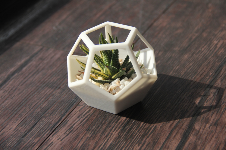 Dodecahedron Planter 3D Print 131053