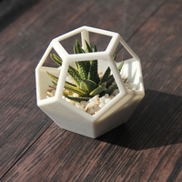 Small Dodecahedron Planter 3D Printing 131053