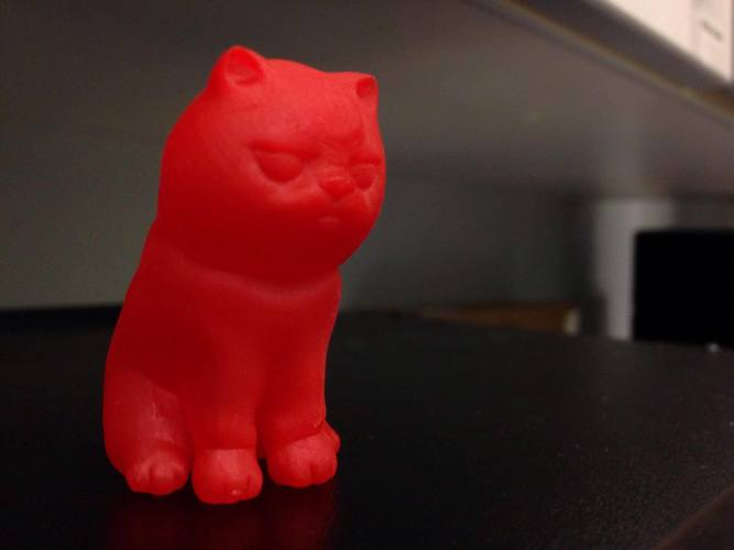 """NokHook"" The black cat 3D Print 131122"