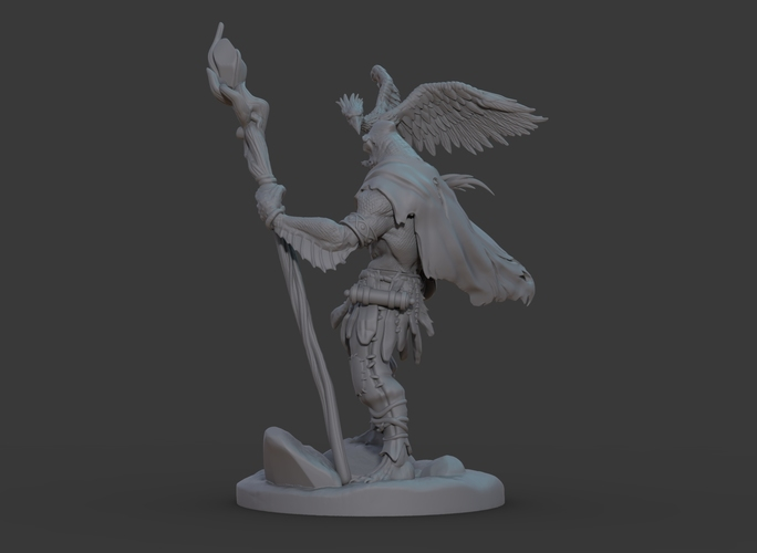 Ran'ril The Druid 3D Print 131781