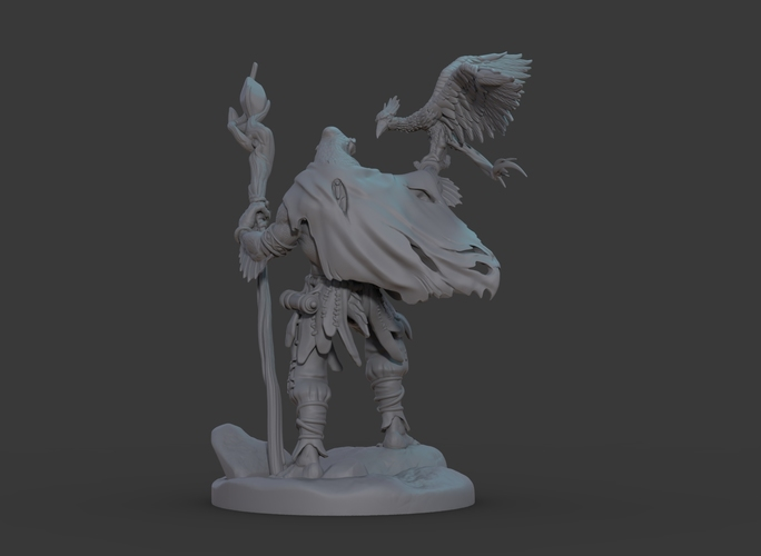 Ran'ril The Druid 3D Print 131782
