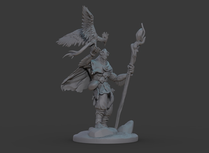 Ran'ril The Druid 3D Print 131783