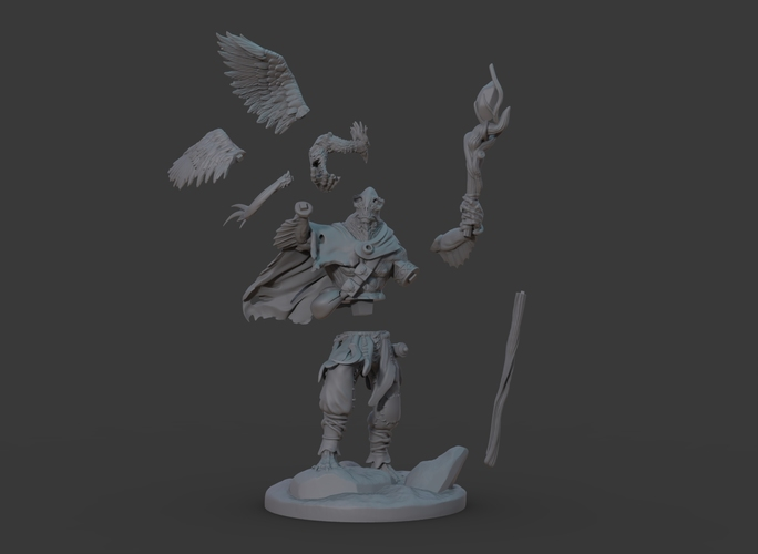 Ran'ril The Druid 3D Print 131784