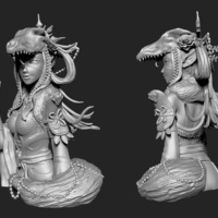 Small Wolf Warrior - RuiMei 3D Printing 132434
