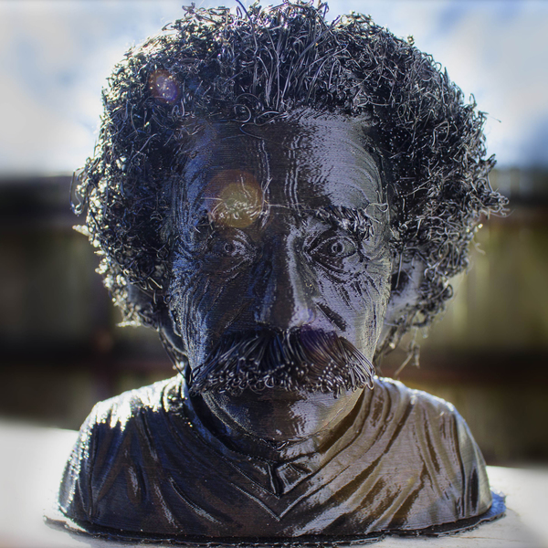 Medium Hairy Einstein 3D Printing 133680