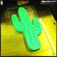 Small Cactus 3D Printing 13432