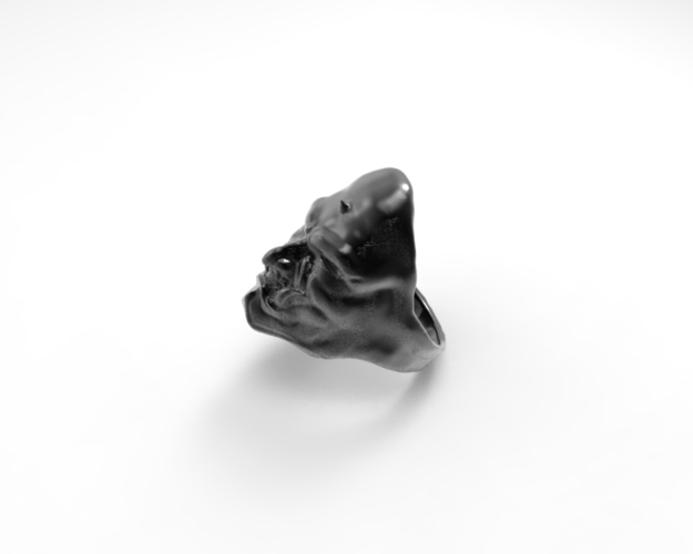 Luo Cha Ring 3D Print 134339