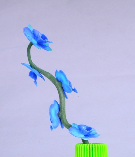 Butterfly orchid 3D Print 13453