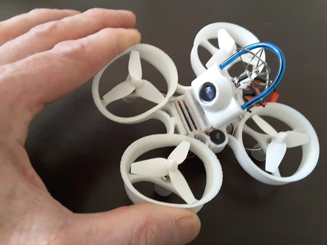 Indestructible Tiny Whoop TPU 90mm 2S 3D Print 134918