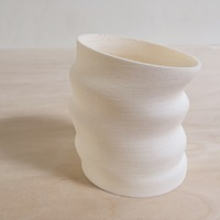"Small ""Deflated"" Vessel 3D Printing 136360"