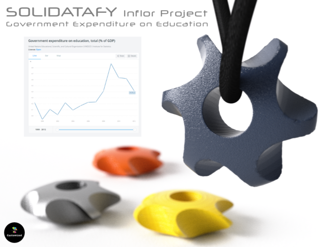 Solidatafy – Government Expenditure on Education 3D Print 137053