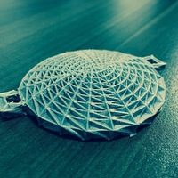 Small Wireframe Eyepatch (Robosnake) 3D Printing 138810