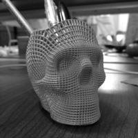Small Wireframe Skull Pencil Holder (For The Love of Dog) 3D Printing 138811
