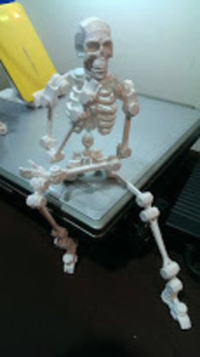 robot about the bone collector 3D Print 139062