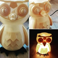 Small Owl Lamp 3D Printing 139879