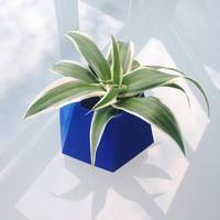 Small Geometric planter 3D Printing 143761