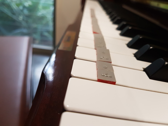 Piano Key Braille 3D Print 144858